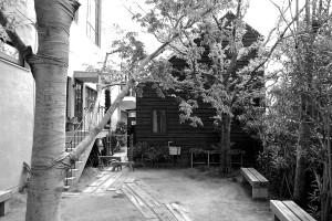 shirokuma_1